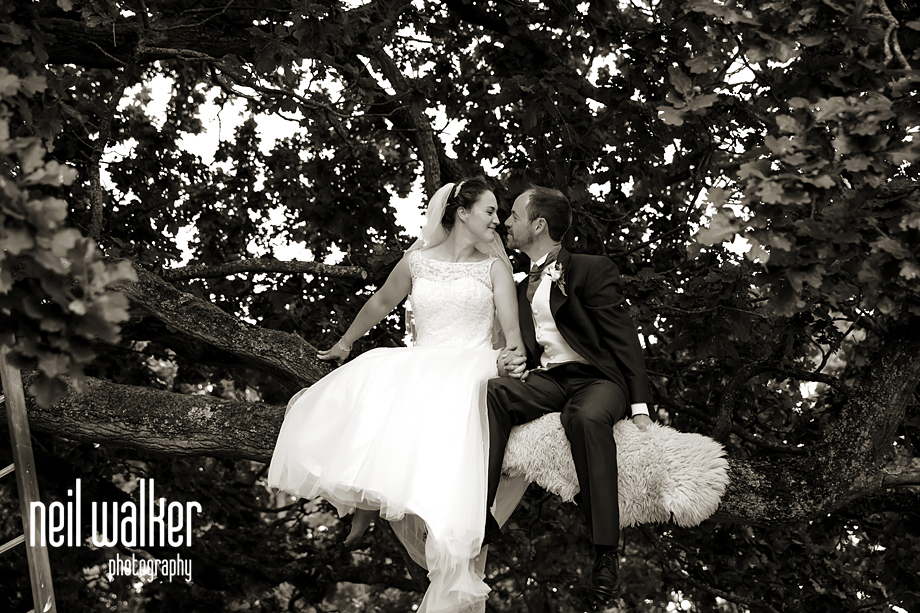 bride & groom in a tree
