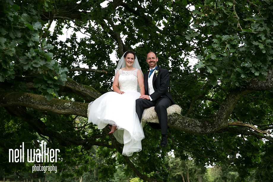 bride & groom smiling in a tree
