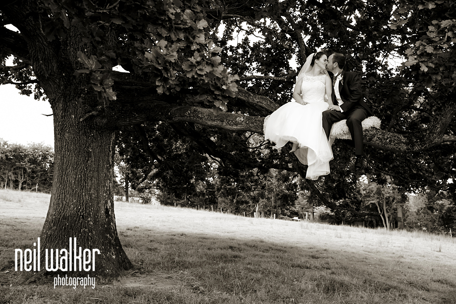bride & groom kissing in a tree