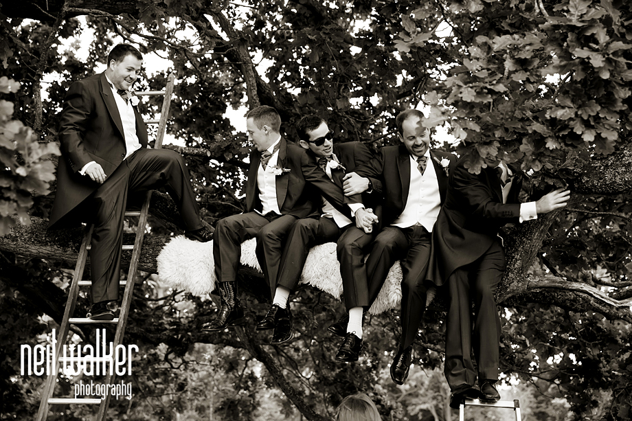 groomsmen laughing in a tree