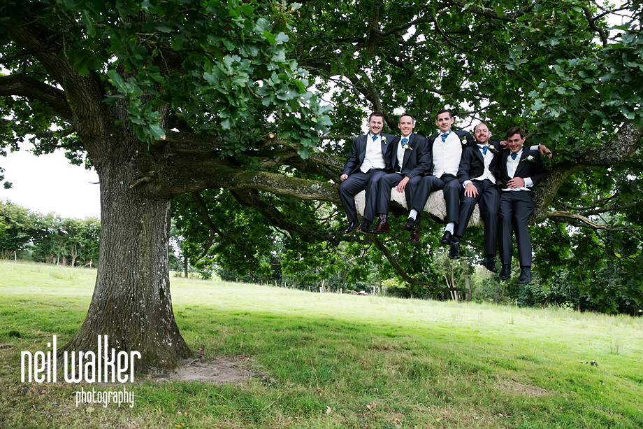 groomsmen being photographed in a tree