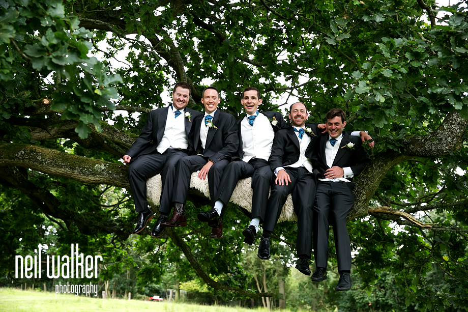 groomsmen laughing together in a tree