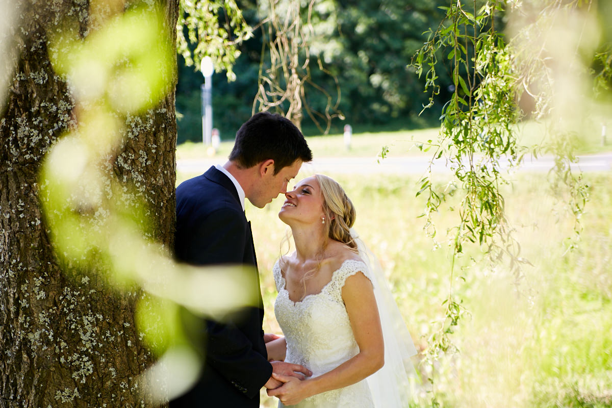 the bride kissing the groom under a willow tree