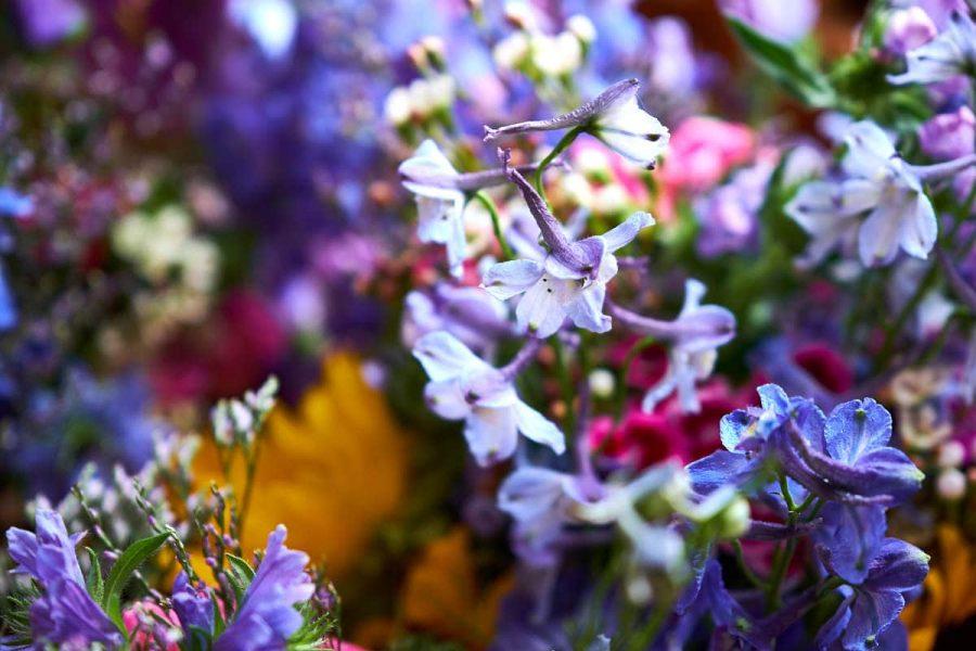A bridal bouquet
